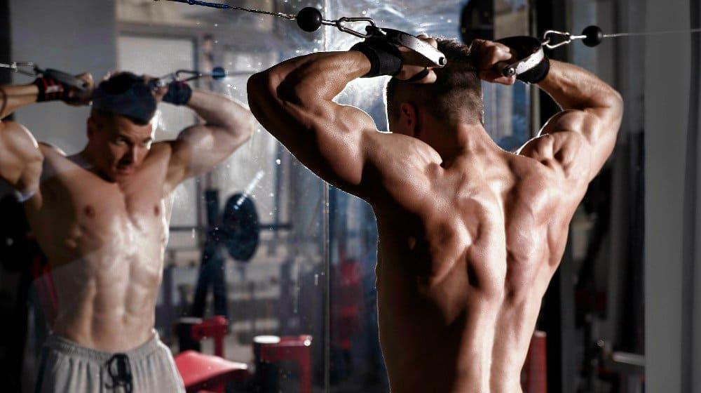 Ciclo Testosterone Propionato